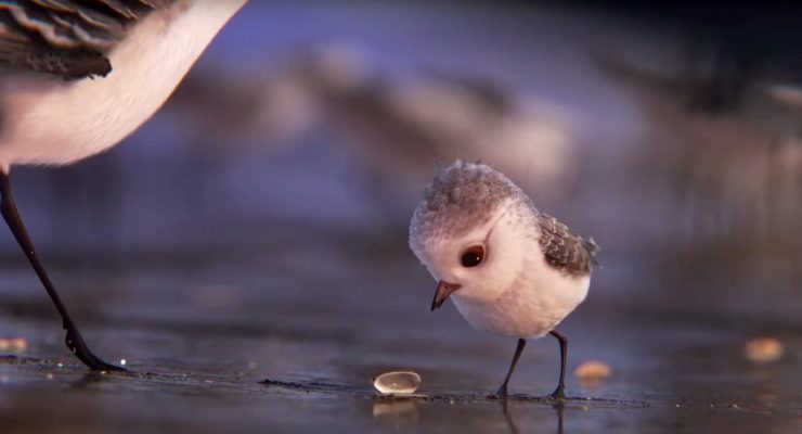 'Piper' Wins Best Animated Short Oscar For Pixar
